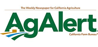 Klamath plantings seek robust barley malts for beer